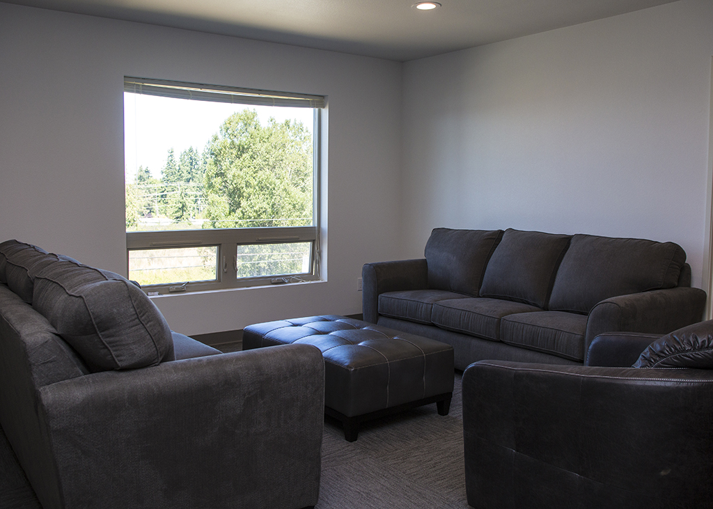 Comfortable couches next to a window.